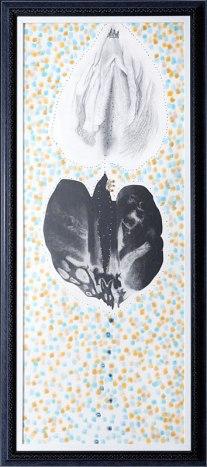 Coeur de pomme - Amélie Lamontagne - La Montagne Ô
