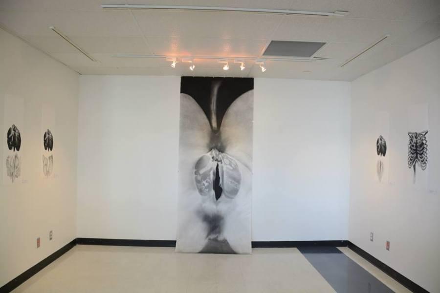 Exposition - quelques endocarpes du corps - Amélie Lamontagne