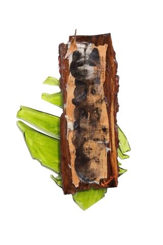 -vendue- pour la Fondation Filles des Bois, Stornoway Famille, écorce, impression sur acétate, résine peinture pour faux-vitrail, 12 cm x 30 cm, 2018
